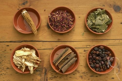 Herbs and Tea